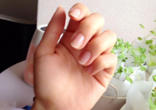 爪の健康=体の健康?
